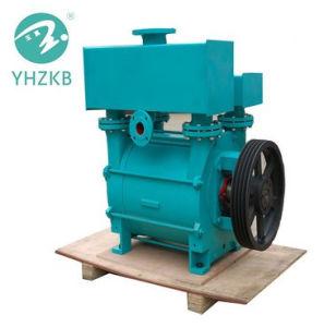 化学工業のための2bec/2be3水か液封真空ポンプ