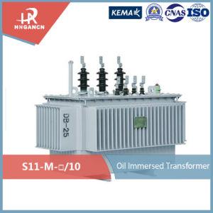 가득 차있 밀봉된 Oil-Immersed 10kv 에너지 절약 전력 변압기