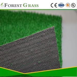 Het klassieke Natuurlijke Kijken het Groene Gras van de Binnenplaats