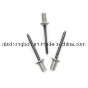 La Chine en aluminium de type ouvert d'acier Rivet aveugle à tête ronde