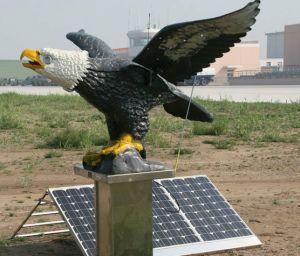 Солнечная птица Repeller (SBG050)
