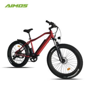 48V 750W el doble de grasa de motor eléctrico de los neumáticos de bicicletas