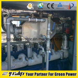 Generatore 10-1000kw (HL-CNG) del motore a gas
