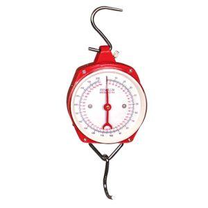 100kg che pesa misurazione appendendo scala