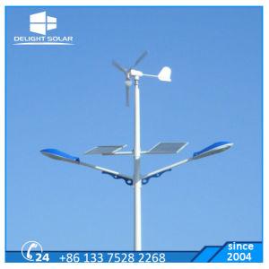 100W/200 Вт/300W Maglev ветровой энергии энергии генератора 12V/24V Mini ветровой турбины