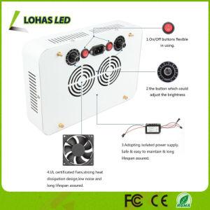 300W High Power LED con atenuación de luz para crecer Veg/flor