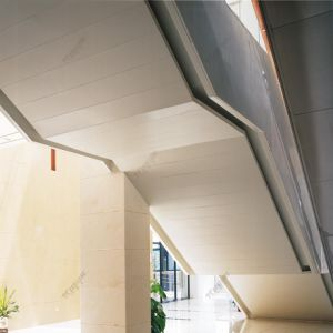 Panneau en aluminium de mur rideau de plafond de panneau en aluminium ignifuge coloré de tuile avec le prix usine de garantie de 20 ans