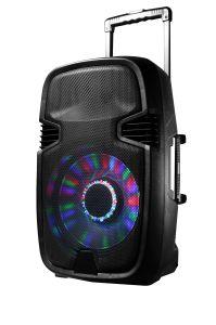 Chariot sans fil avec deux haut-parleur Bluetooth microphone