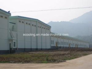 Kundenspezifische Kaltlagerung für Gemüse-Frucht-frische haltene aufbereitende Fabrik
