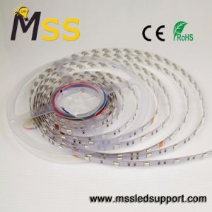 Tira de LED de alta potencia 5050/cinta/Cuerda