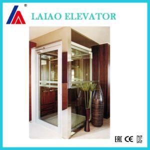 機械Roomlessが付いている緑の環境保全のホームエレベーターの上昇