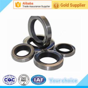 Guarnizione rotativa dell'asta cilindrica del compressore con l'anello doppio dell'acciaio inossidabile dell'orlo di sigillamento di PTFE