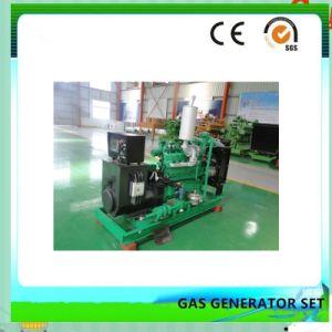 世帯のElectricsmallのBiogasの発電機45kw