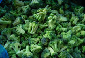 IQF gefrorene Gemüsenahrung Broccolis