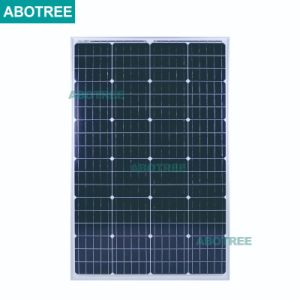 Comitato solare del mono modulo solare di alta qualità 110W