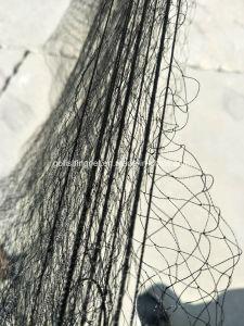 Aves de nylon mist net
