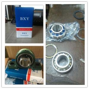 OEM o rodamiento del bloque de almohadilla de la marca de Bxy