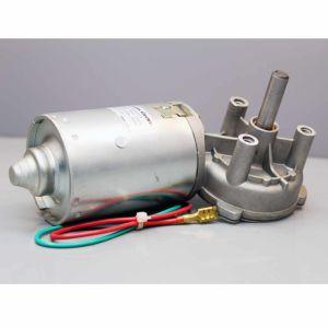 24V 33rpm 6nm (MB062FF100-WD0069-12)のDC Worm Gear Motor