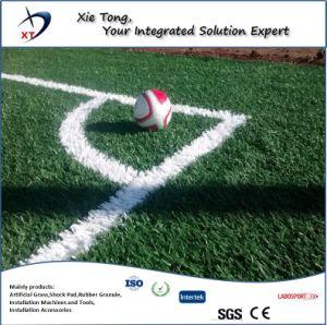 Diseño libre de toda la gente de 7X7 de fútbol de césped artificial campo System