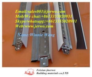 Het Net van het Plafond T van het gips en het Comité 595X595 van het Plafond van pvc