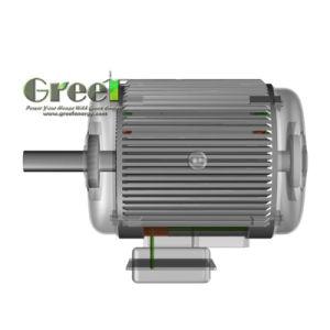 NdFeB generador de imán permanente de 45 kw 750rpm
