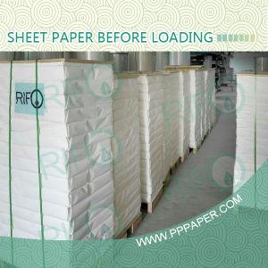 防水表面の上塗を施してある合成物質HPのインディゴPPのコピー用紙