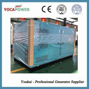 250kVA Weichai 엔진 디젤 엔진 침묵하는 발전기 세트