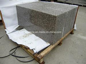 Anti Slip Tegels : De antislip zwarte trede van de steen van het graniet stootbord