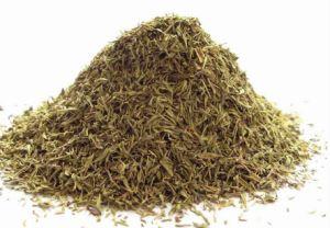 Alta qualidade de extracto de tomilho puros e naturais