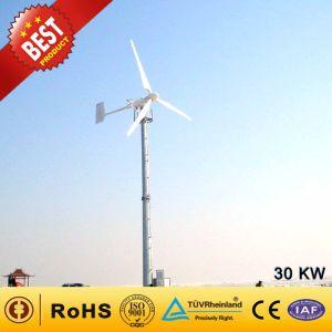 30kw de potencia eólica / Generador de turbina de viento para uso comercial (30KW).