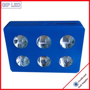 Super potencia 756W Chloroba LED2 crecen con la luz de espectro completo