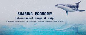 Морские грузовые перевозки из Шанхая в Таиланд и Вьетнам/Сингапур/Малайзии и Индонезии
