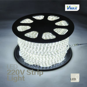 220V 3528 LED Flexible Strip