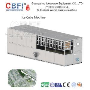 Économies d'énergie Ice Cube plante