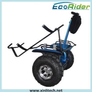 Два колеса на баланс электрический скутер или дорожного электрический велосипед, встать электромобиль или поле для гольфа тележки