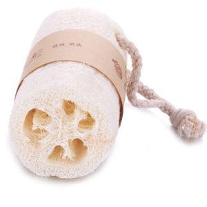 Huis 100% Luffa van de Spons van de Was van het Lichaam van de Organic Loofahs Loofah SPA Exfoliating Luffa van de Gaszuiveraar van de Aard ( lengte ong. 4-5) de Natuurlijke