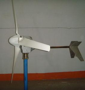 1000w 작은 바람 터빈 +3 탄소 섬유 Slient 잎 (USD600 전용)