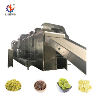 L'industrie de la machine de séchage de tranche de citron multicouche