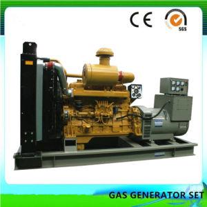 Lebendmasse-Energien-Generator mit Cer und ISO-Bescheinigung (500KW)