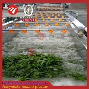 Ortaggi freschi di /Ozone della bolla e lavatrice della frutta