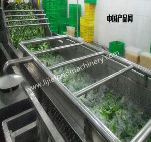 En acier inoxydable de qualité alimentaire Lijie Fruits machine lave-glace/frais Légumes Racines Machine à laver/rondelle alimentaire