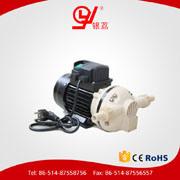 Vier Leaf CH8025 Cer Cheapest Ein 12V Diaphragm Vacuum Pump