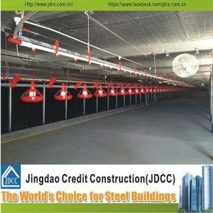 Jdccの容易な輸送は鋼鉄ニワトリ小屋をインストールし、