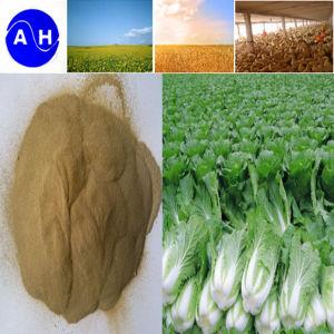 Van de bron installatie Aminozuren met de Organische Meststof van het Chloride