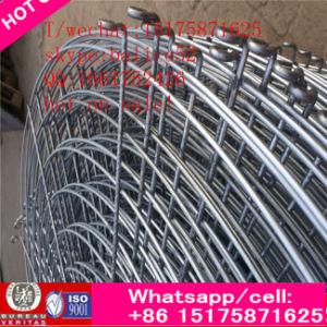 Aria fresca cilindrica del ventilatore di ventilazione dello scarico del ventilatore di flusso assiale di vendita di vortice industriale caldo ricco del tetto