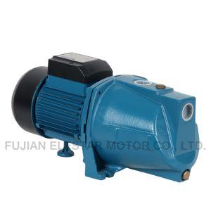 Jsw/Jspシリーズ220V 1HP自動プライミング水ポンプ