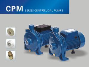 Cpm-158 1HP 0.75kw zentrifugale Wasser-Pumpe