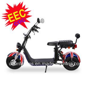 Motorino elettrico del EEC Harley con le rotelle grasse per le doppie sedi adulte