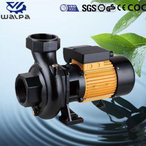 1.5HP Hf-5ам центробежный водяной насос для орошения сельскохозяйственных