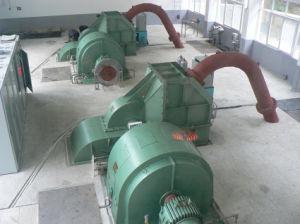 Turbina di Pelton (CJ22-W-110/2*11)